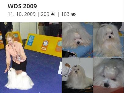 WDS 2009
