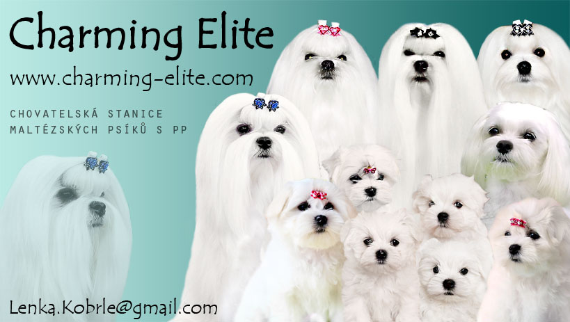 Charming Elite