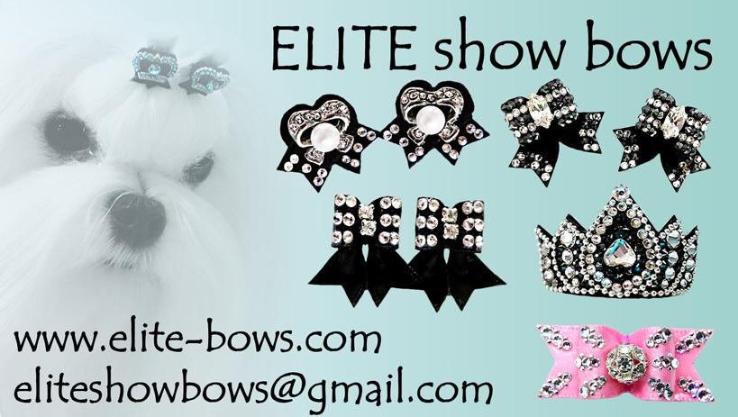 Elite show bows