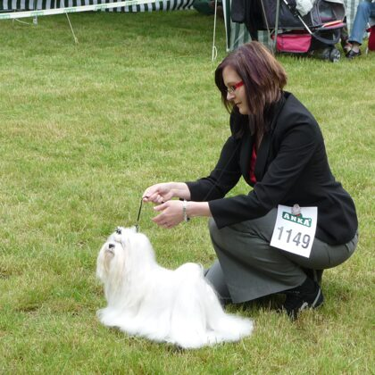 4.6.2010 NATIONAL DOG SHOW SENEC (SK)